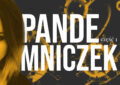 Pamiętnik z pandemii